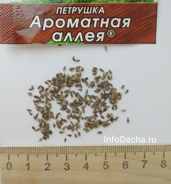 Петрушка семена