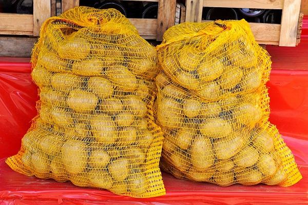 Картофель в сетке