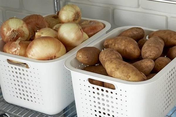 Хранение лука и картофеля