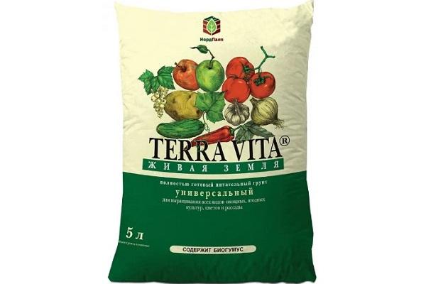 TerraVita грунт